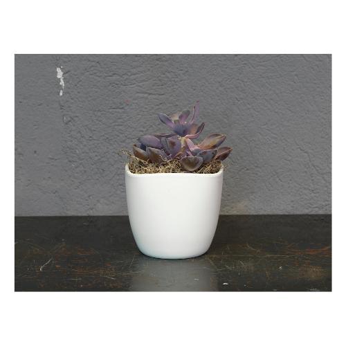 Coprivaso Corino Bruna Lara 904/19VA ceramica smaltata bianco 19 x 19 x 17,5  cm