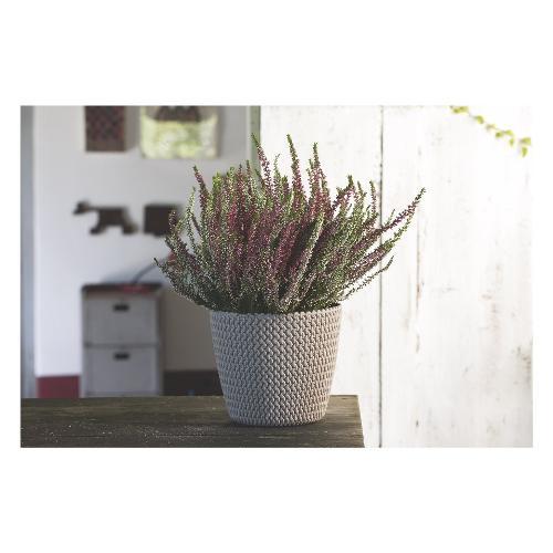 Vaso piante Prosperplast Splofy 19/M9 polipropilene sabbia D. 19 x h. 16  cm
