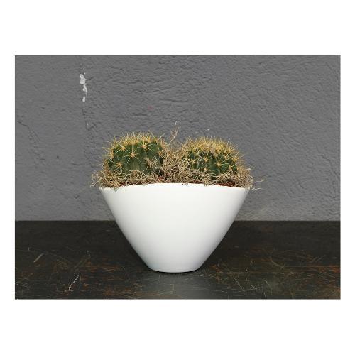 Vaso piante Corino Bruna Bruna 405/20VA ceramica smaltata vaniglia D. 20 x h. 15  cm