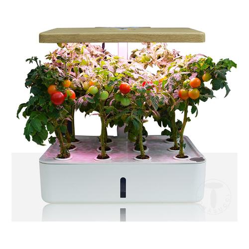 Serra Tomasucci Green garden bianco opaco 35 x 26 x 24 - 38  cm 4163