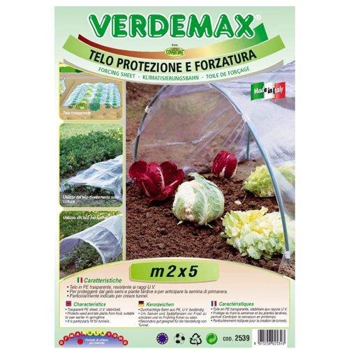 Telo protezione piante Verdemax 2539 trasparente 5 x 2  m