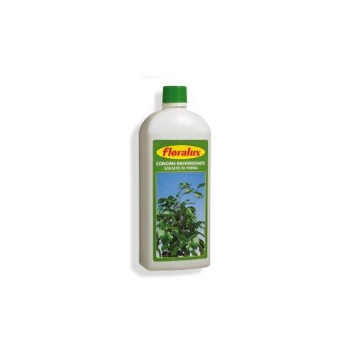 Concime Dom Sementi Liquido rinverdente 1,0 kg 50620260